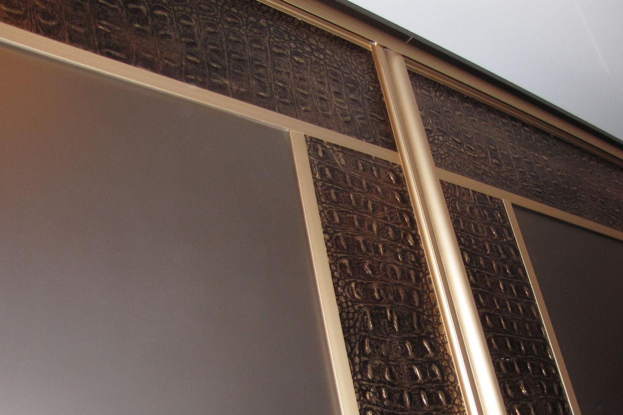 Шкафы купе фото из кожи дизайн